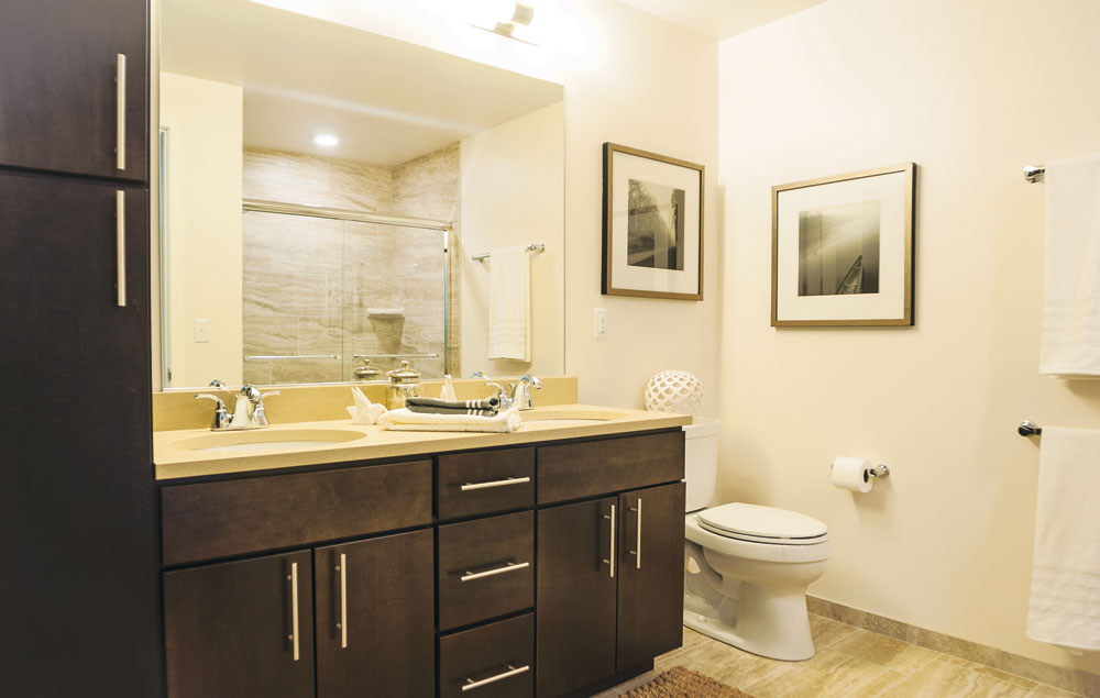 luxury two bedroom apartment bathroom