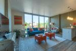 living-room-great-natural-light